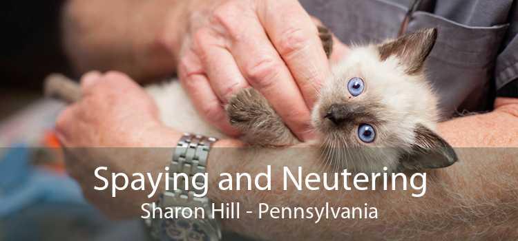Spaying and Neutering Sharon Hill - Pennsylvania