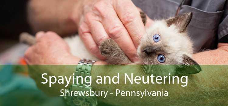 Spaying and Neutering Shrewsbury - Pennsylvania