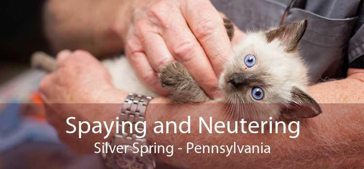 Spaying and Neutering Silver Spring - Pennsylvania