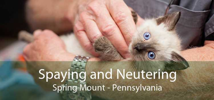 Spaying and Neutering Spring Mount - Pennsylvania