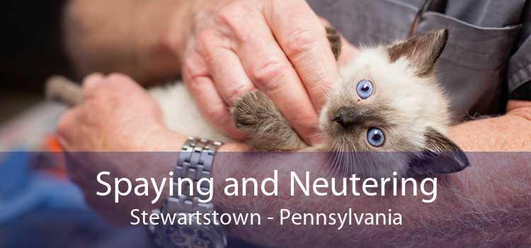 Spaying and Neutering Stewartstown - Pennsylvania