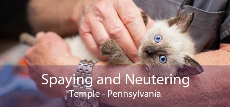 Spaying and Neutering Temple - Pennsylvania