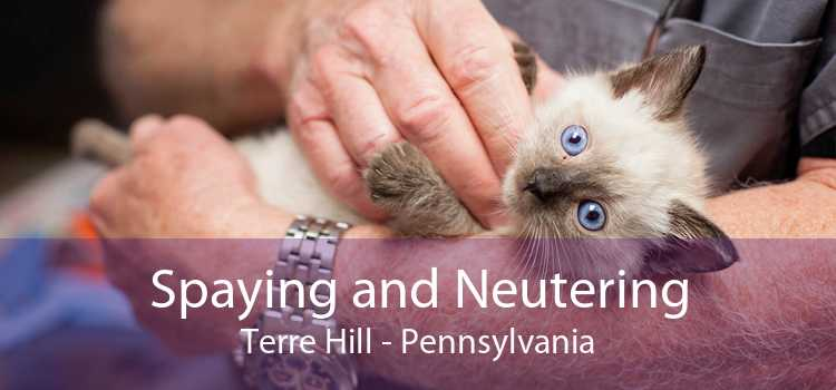 Spaying and Neutering Terre Hill - Pennsylvania