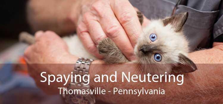 Spaying and Neutering Thomasville - Pennsylvania