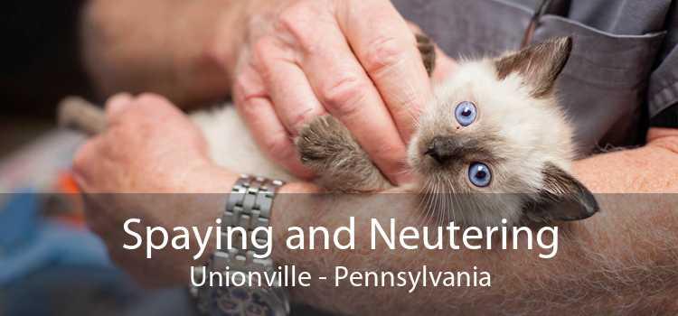 Spaying and Neutering Unionville - Pennsylvania