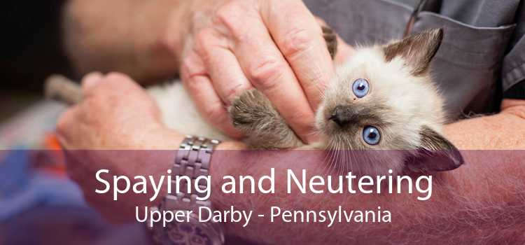 Spaying and Neutering Upper Darby - Pennsylvania