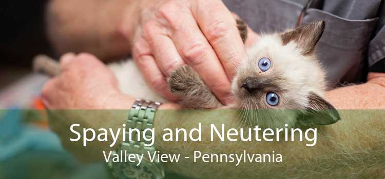 Spaying and Neutering Valley View - Pennsylvania