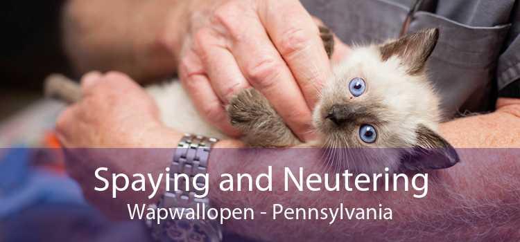 Spaying and Neutering Wapwallopen - Pennsylvania