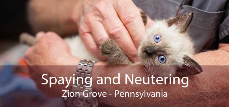 Spaying and Neutering Zion Grove - Pennsylvania