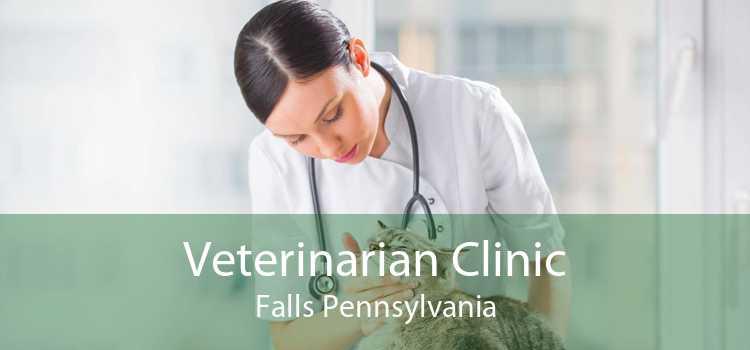 Veterinarian Clinic Falls Pennsylvania