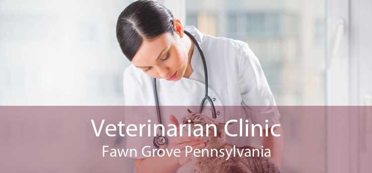 Veterinarian Clinic Fawn Grove Pennsylvania