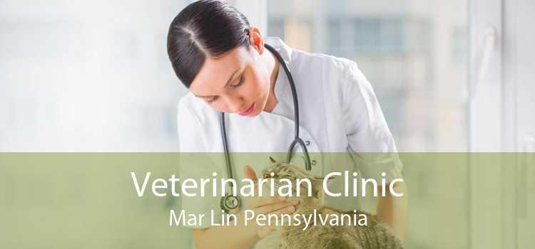 Veterinarian Clinic Mar Lin Pennsylvania