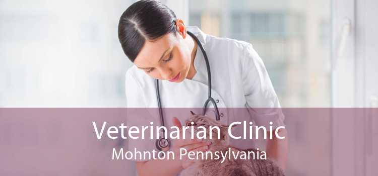 Veterinarian Clinic Mohnton Pennsylvania