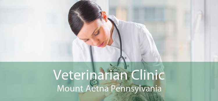 Veterinarian Clinic Mount Aetna Pennsylvania