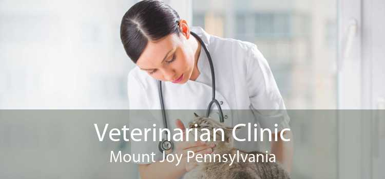 Veterinarian Clinic Mount Joy Pennsylvania