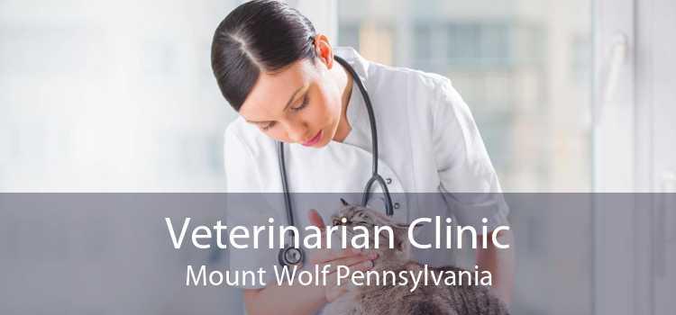 Veterinarian Clinic Mount Wolf Pennsylvania