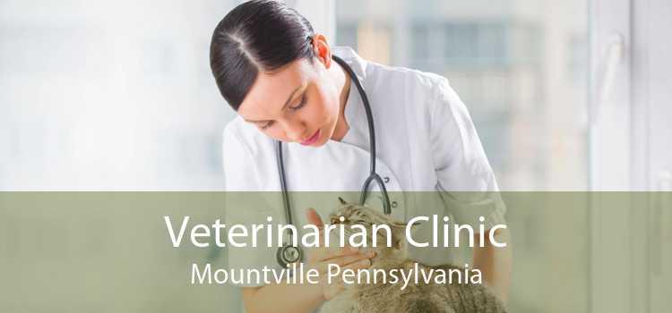 Veterinarian Clinic Mountville Pennsylvania