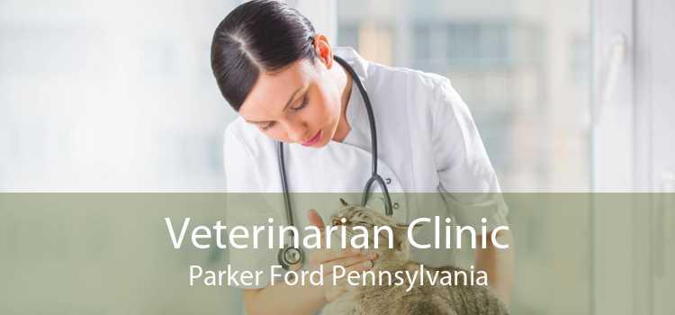 Veterinarian Clinic Parker Ford Pennsylvania