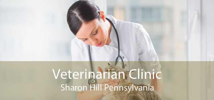 Veterinarian Clinic Sharon Hill Pennsylvania
