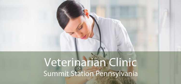 Veterinarian Clinic Summit Station Pennsylvania