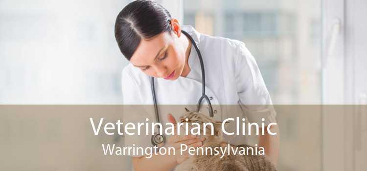 Veterinarian Clinic Warrington Pennsylvania