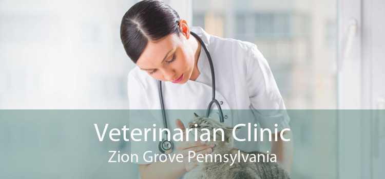 Veterinarian Clinic Zion Grove Pennsylvania